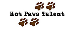 hot-paws-talent