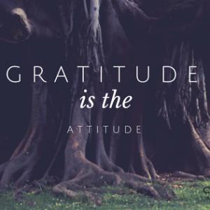 Gratitude Is The Attitude